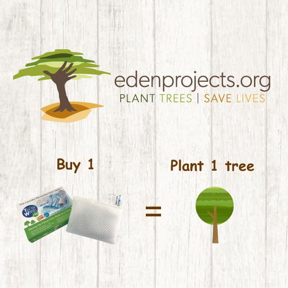 Terra Wash s-a alăturat Proiectului Eden Reforest